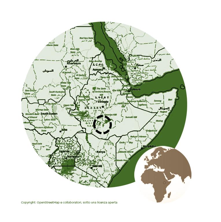 ETIOPIA SIDAMO G2 TOP