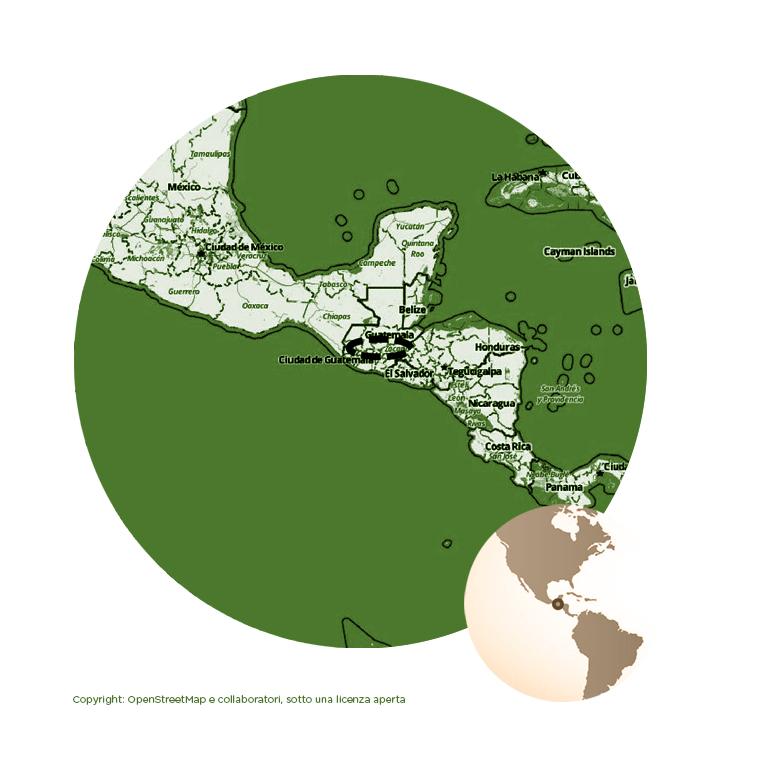 GUATEMALA LA DELICIA Strictly Hard Bean