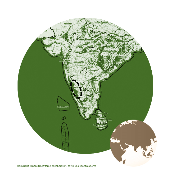 INDIA MONSONATO